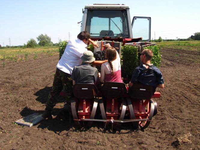 Farmer Paul adjusting the planting machine