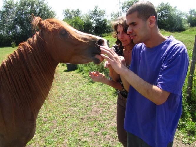 Khalid meets Larry the pony with Farmer Doreen