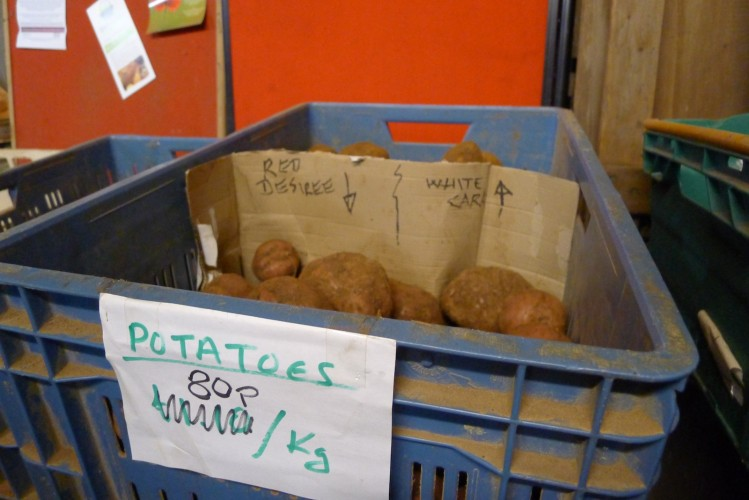 CSA members can buy carrots, potatoes, onions and meat to supplement their weekly share.