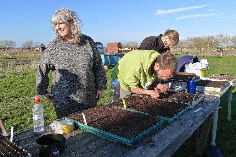 Lynn amongst everyone at today's farm day sowing seeds in the sunshine