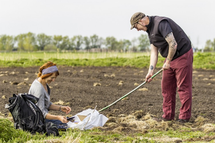 Bev and Rob prepare land and sow out the Grow Wild wildflower seed