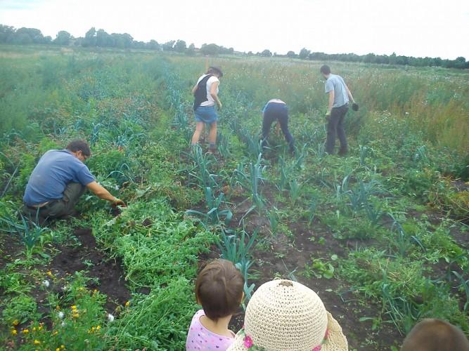 Team leek power through the weeds